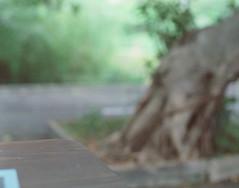 A Glimpse of Taipei 一眼台北 (tsubasa8336) Tags: pentax67 mediumformat film filmphotography filmcamera taipei 中片幅 中判 底片 銀鹽 寫真 台湾 台北 バケペン フィルム 写真 銀塩