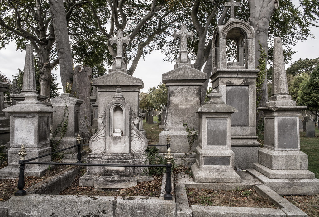 SEPTEMBER 2018 VISIT TO GLASNEVIN CEMETERY [ I USED A BATIS 25mm LENS AND I EXPERIMENTED WITH CAPTURE ONE]-144798
