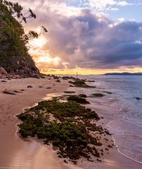 Shoal Bay - Port Stephens (andrew.walker28) Tags: shoal bay port stephens new south wales australia water sea ocean sand beach waves