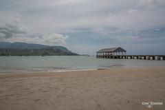 Hanalei Pier (DanaMichelle309) Tags: beach hanalei hanaleibay hanaleipier hawaii kauai unitedstates us