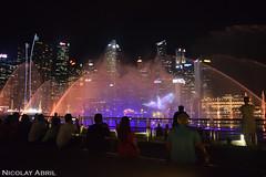 Spectra – Marina Bay Sands Light and Water Show (Nicolay Abril) Tags: singapore singapura 新加坡 சிங்கப்பூர் singapur singapour सिंगापुर asia asien asie l'asie 아시아 เอเชีย អាស៊ី 亚洲 亞洲 アジア châuá sudesteasiático đôngnamá southeastasia asiatenggara asiedusudest sudestasiatique 东南亚 ஆசியா தென்கிழக்குஆசியா lowerbroadwalk marinabay spectra marinabaysandslightandwatershow ightandwatershow nightphotography fotografíanocturna fotografiadinotte photographiedenuit noche nuit night 夜、夜の写真 夜間攝影 晚上 malamfotografi malam இரவுபுகைப்படம் இரவு lights citylights விளக்குகள் நகரம்விளக்குகள் lampu lampubandar 燈 城市的燈光 lumières lumièresdelaville luces lucesdelaciudad