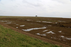 Marshes near Wainfleet (JonCombe) Tags: coastwalk219 lincolnshire lincs coast marshes the wash thewash