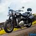 Triumph-Bonneville-Speedmaster-11