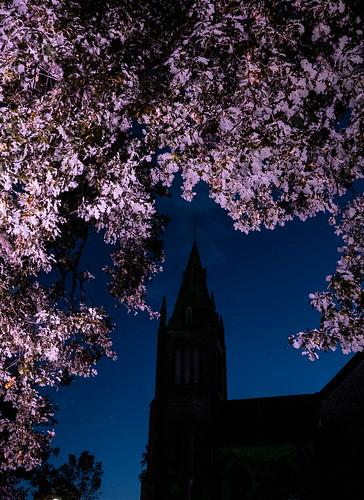Parish Church, Kirkcudbright Festival of Light