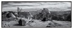 Glacier Point (Alan-Taylor) Tags: yosemite nationalpark usa halfdome glacierpoint monochrome blackandwhite