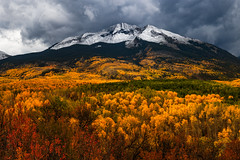 West Beckwith Storm (Matt Payne Photography) Tags: fallcolors fallfoliage fall autumn mountain westbeckwithmountain keblerpass colorado contaxyashica sonya7r2 storm storms weather aspentrees scruboak vibrant snowcapped snow