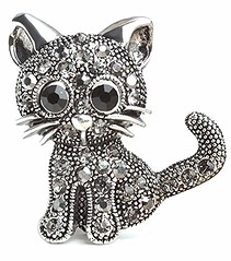 Cute Summer Cat Brooch Pin (mywowstuff) Tags: gifts gift ideas gadgets geeky products men women family home office