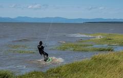 P9075709 (Copy) (pandjt) Tags: québec quebec travelogue lapocatière stlawrenceriver kitesurfer watersports kitesurfing kiteboard kiteboarding