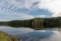 ashleyreservoir2018-157 (gtxjimmy) Tags: ashleyreservoir nikond7500 nikon d7500 newengland holyoke massachusetts autumn fall watersupply reflections reflection hdr