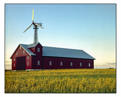 June 24th - 4x5 (magnus.joensson) Tags: sweden skåne summer june söderslätt large format 4x5 intrepid camera voigtlander heliar 21cm f45 kodak ektachrome e100g e6 exp ncps epson v800 scan