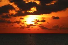Sunset silhouette (leewoods106) Tags: boat fishingboat beautifulsunset sunlight warmsunset sunshine redsunset sunset clouds cloudy cloud orange red man silhouette tanjungaru shangrilatanjungaru kotakinabalu sabah borneo malaysia asia southeastasia east fareast southchinasea pacific pacificocean ocean wet water