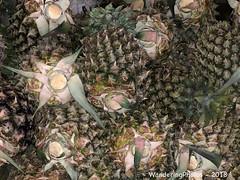 Spiky Pineapples - Street Market - Nyaungu Bagan â¨Myanmar (WanderingPJB) Tags: accumulation flickruploaded myanmar burma bagan spiky pineapples streetmarket bazaar nyaungu