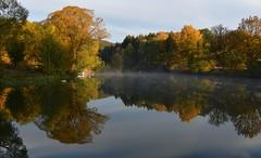 Mystical morning at the pond (:Linda:) Tags: germany thuringi village bürden tree pond reflection mist