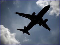 Anglų lietuvių žodynas. Žodis aircraft reiškia n aviacija lietuviškai.