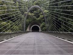 AGQ-20180927-0025 (AGQue) Tags: 2018 asia autumn fall gmt0900tokyostandardtimezone japan koka september shigaprefecture travelphotography bridge museum suspensionbridge tunnel vacationing kokashi jp
