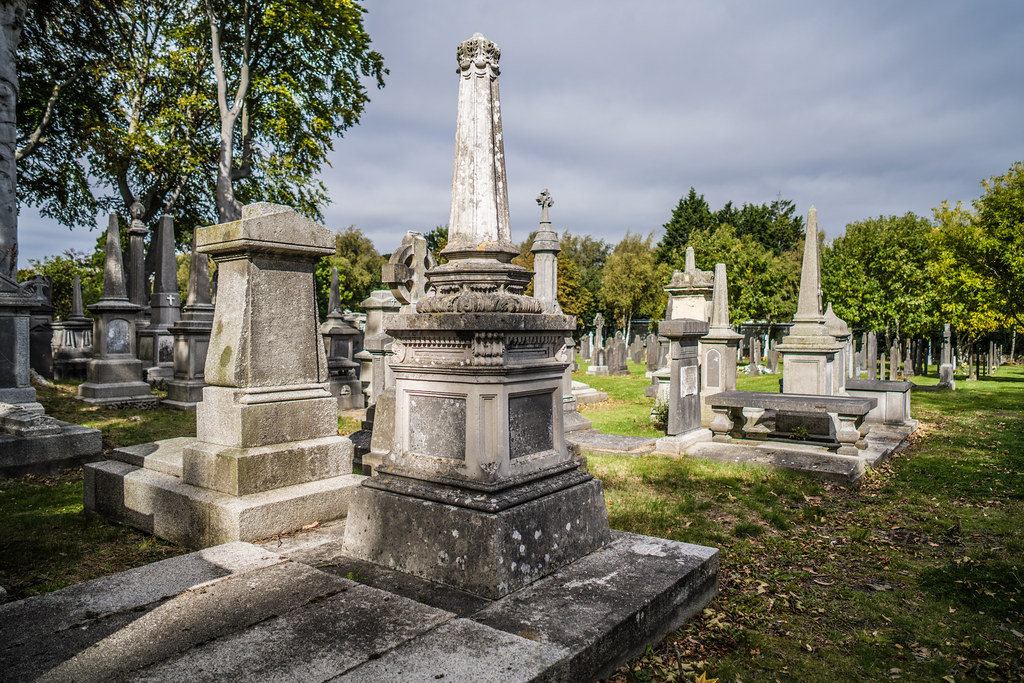 SEPTEMBER 2018 VISIT TO GLASNEVIN CEMETERY [ I USED A BATIS 25mm LENS AND I EXPERIMENTED WITH CAPTURE ONE]-144813