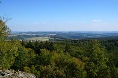 Wanderung zur Wildenburg (2), im Hunsrück (okrakaro) Tags: wanderung wildenburg hunsrück morschied natur ausblick hügel hiking nature landscape hills forest trees blue sky september 2018 germany naturparksaarhunsrück saarhunsrücksteig