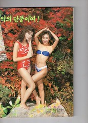"Seoul Korea vintage advertising pin-ups from Weekly Kyunghyang magazine circa 1989 - ""Autumn Tints"" (moreska) Tags: seoul korea vintage pinup 1989 autumn tints leaves bikini seminude posed outdoor sexy hangul graphics fonts folksy seasons massmedia weekly kyunghyang 1980s retro nostalgia collectibles archive museum rok asia"