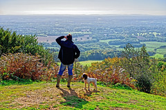 I see no ships (Geoff Henson) Tags: man dog person viewing grass tree bracken fields view vista landscape hill viewpoint surrey leithhill