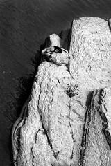 Deadonna I (Debora Costi) Tags: woman nature wild spirituality mountain rocks river water elements