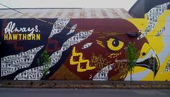 Home of the Mighty (WeFive5) Tags: wall art hawk hawthorn glenferrievillage football hawthornfootballclub thehawks bankofmelbourne street streetphotography samsung