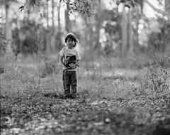 Wandering (GOJR.) Tags: portrait sheets film analog kodakhc110 ilfordfp4 telephotoraptar 4x5 largeformat graflexspeedgraphic wollensak15inchf56 wollensak