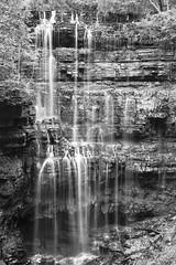 Virgin Falls3 (All Aspects of Photography) Tags: film fuji 960 120mm medium format black white waterfalls tennessee pmk pyro fp4 ilford