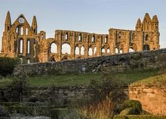 Sunset Abbey 1 (1 of 1) (DXW1978) Tags: whitby abbey ruins panasonic lumix fz80 fz82