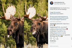 Instagram Offers Visual Allure, and the Travel Industry Wants In (kwaqas504) Tags: bbc news world ccn new york times