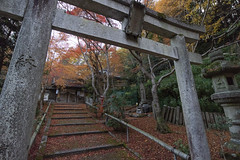 Sorin-in,Yamashinaku,Kyoto (yopparainokobito) Tags: 双林院 sorinin sourinin そうりんいん 山科聖天 yamashinaseiten やましなせいてん 京都 kyoto autumnleaves autumncolors 紅葉 canon eosm3 eos m3 efm1122mm1456isstm efm 1122mm f456 is stm