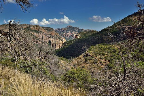 A Wide Angle View with Lost Mine Peak Beyond the Hillsides and Mountainsides (Big Bend National Park)