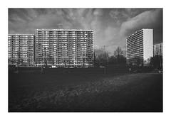 170219_00009_OM2n-kodak-Tri-X-400_the other side 5/6 (A Is To B As B Is To C) Tags: aistobasbistoc b belgië belgium antwerpen antwerp linkeroever charlesdecosterlaan gloriantlaan olympus om2n analog film kodak trix bw blackwhite blackandwhite monochrome urban landscape tower towerblock towers slab housing social urbanism architecture city cityscape manmade void emptyness theotherside sky clouds
