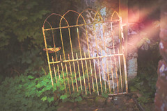 Spooky Light... (KissThePixel) Tags: spooky halloween october gate sunset sunlight light magic ghost ghostly autumn autumnlight autumncolours autumnwalk nikon nikond750 50mm architecture ancient old rustic history creativephotography garden