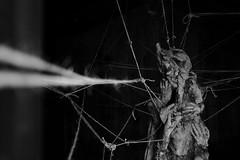 Empathy (sebastienvillain) Tags: fujifilm fuji fujifeed xe2 xseries xf18mm noiretblanc noir blanc blackandwhite black white bw nb monochrome couvent marseille marseilles expo exposition artwork rope corde ropes cordes head tete