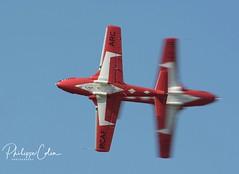 DSC_6635x (Mephisto3) Tags: rcaf snowbirds 431sqdn aerogatineau2018 gatineau acrobatic cynd airshow demo avgeek