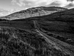 Dark Path - Argyll Sept 2018 (GOR44Photographic@Gmail.com) Tags: mono monoscotland scotland bw path panasonic gor44 grass munro benvorlich ben power line sunlight shadows butterbridge ardlui argyll g9 olympus 1240mmf28 arrocharalps benvane fence