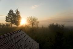 Rujan u Selniku / September in Selnik (Vjekoslav1) Tags: hrvatska hrvatskozagorje croatia sunrise zora jutro jesen ljeto rujan september sun sunce svjetlo light trees drveće drvo tree