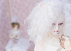 delisious (05) (toriasoll) Tags: bjd abjd doll dolls dollphotography dollphoto soom soomkorea dollsoom soomheliot heliot heliotdreamripper gluino gluinovamp