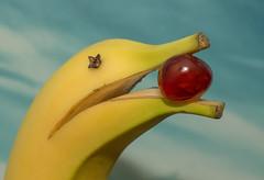 B is for...dolphin??? (grbush) Tags: macro monday macromonday bfood funwithfood food banana fruit yellow dolphin cherry macromondays