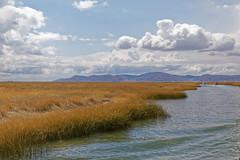 0G6A2129_DxO (Photos Vincent 2011 and beyond) Tags: pérou peru puno titicaca uros ile isla island lake lago lac bolivie lapaz