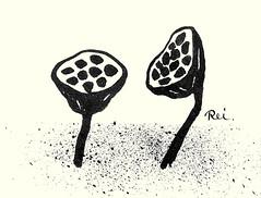 Sacred lotus (Japanese Flower and Bird Art) Tags: flower sacred lotus nelumbo nucifera nelumbonaceae reika iwami modern woodblock print japan japanese art readercollection