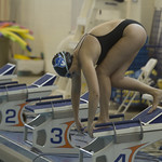 "<b>_MG_9412</b><br/> 2018 Alumni Swim Meet. Photo Taken By:McKendra Heinke Date Taken: 10/27/18<a href=""//farm2.static.flickr.com/1914/30847057597_d54d46acb3_o.jpg"" title=""High res"">&prop;</a>"