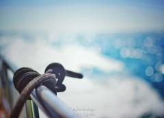Knot on my planet (Mister Blur) Tags: knot boat yatch progreso yucatan mexico blue sea sky bokeh dots knotonmyplanet anelephantneverforgets elephant campaign shallow depthoffield dof snapseed nikon d7100 35mm f18 rubén rodrigo fotografía profundidaddecampo