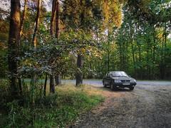 Wycieczka do lasu (J. Piecuch) Tags: fso polonez caro dolnyśląsk lowersilesia fabrykasamochodówosobowych fabryka samochodów osobowych las forest september wrzesień snapseed