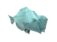 Humphead Parrotfish (folding~W.EL.L) Tags: origami paper folding fish parrotfish sealife