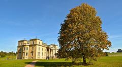 CROOME COURT (chris .p) Tags: nikon d610 croome court worcestershire england capture nt nationaltrust uk autumn 2018 tree september