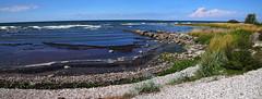 2018-08-04 (Giåm) Tags: lummelunda östersjön baltic balticsea baltique merbaltique ostsee østersøen gotland sverige suede sweden schweden giåm guillaumebavière
