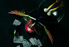 no named Finch (frecklefoxmitch) Tags: abjd bjd balljointeddoll doll dollchateau carol cards surreal