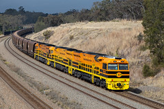 Orange and Black Country (deanoj305) Tags: belford newsouthwales australia au