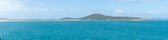 Shoal bay NSW (Beckett_1066) Tags: holiday shoalbay new south wales ocean sand beach birds animals camels